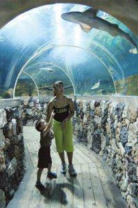 Acquarium v Lignanu - průhledný tunelu pod vodní hladinou